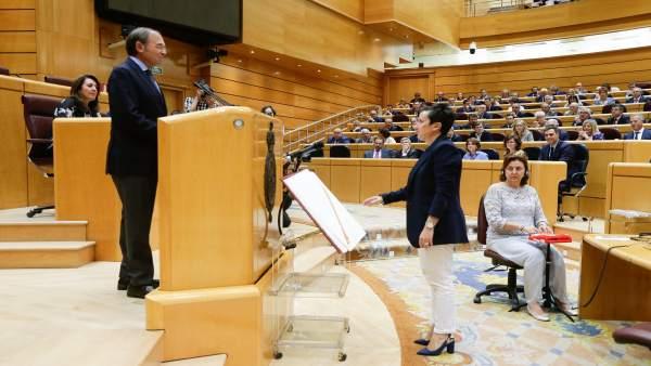 María Fernández toma posesión de su acta como senadora por Asturias