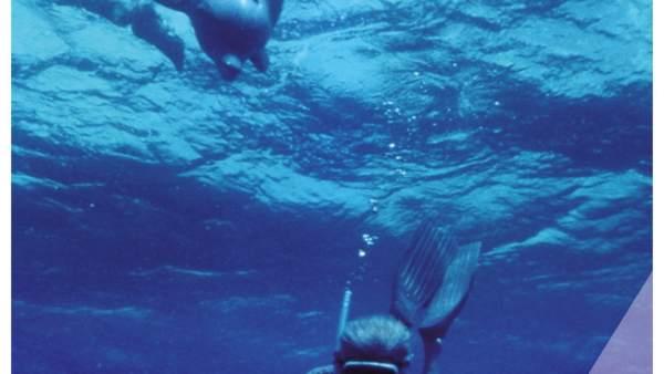 El Flime  'Dolphin Man'