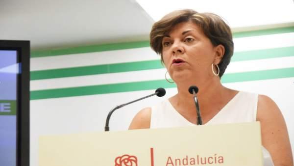 Fuensanta Lima, senadora del PSOE