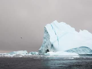 La Antártida según Rubén Sánchez