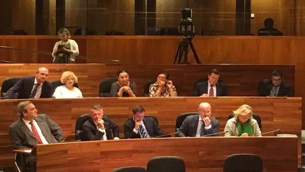 Diputados del PP en la Junta General