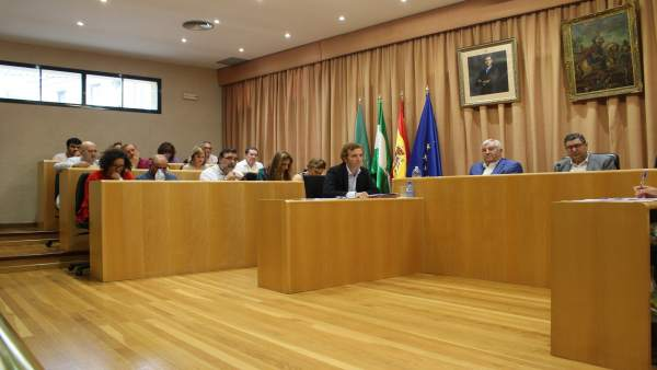 Pleno de Vélez-Málaga