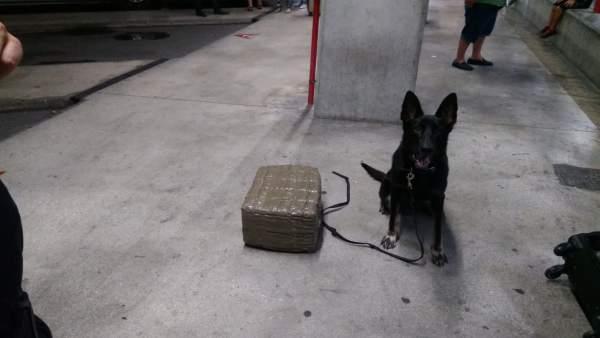 El agente de la Unidad Canina que halló la droga en la maleta