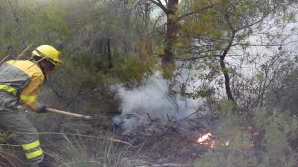 Conato de incendio en terreno forestal valenciano