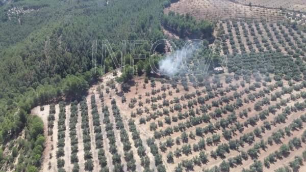 Incendio forestal en Pozo Alcón (Jaén)