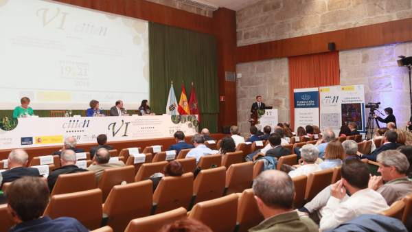 VI Congreso de Investigación e Innovación en Enfermedades Neurodegenerativas.