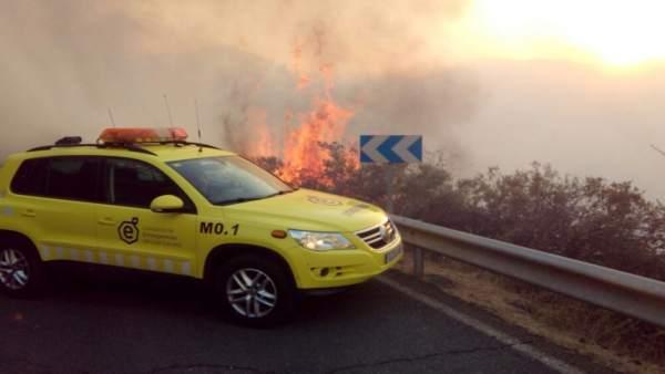 Bomberos trabajando en el incendio de Tejeda (recurso)