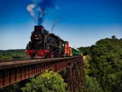 Mecánico ferroviario