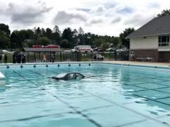 'Aparca' el coche en el fondo de una piscina durante unas prácticas de conducir