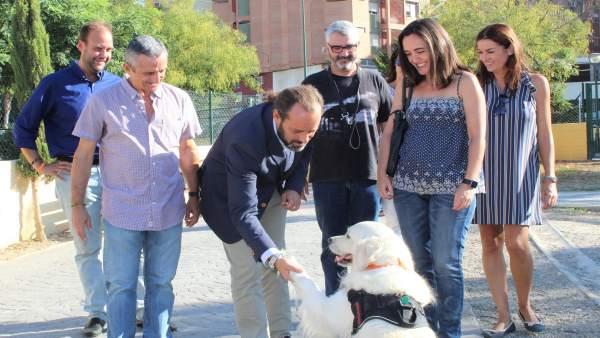Juan Cassá le da la mano a un perro protección animal Ciudadanos Cs málaga