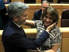 """El Gobierno muestra su """"confianza plena"""" en Delgado mientras la oposición presiona para que dimita"""