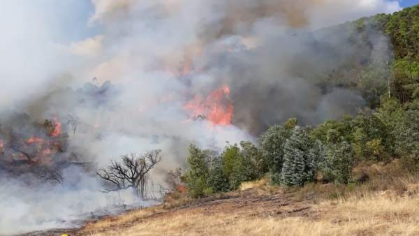 El Infoca trabaja en la extinción de un incendio en La Granada de Riotinto.