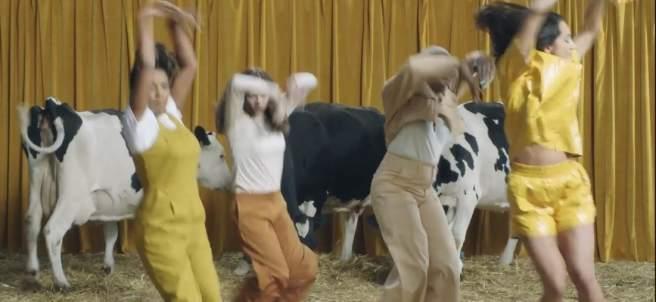 Anuncio vacas