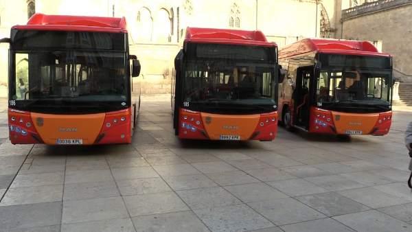 Autobuses en Burgos.