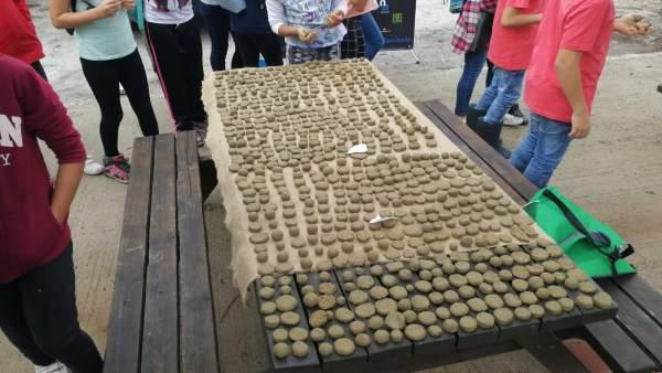 Escolares participan en talleeres de creación de Bombas de semillas