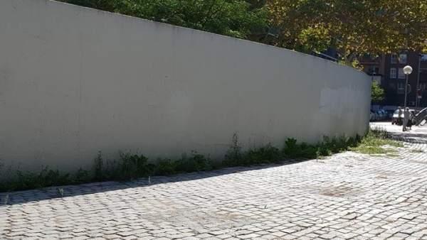 Las malas hierbas crecen en los márgenes de la escultura de Richard Serra 'El muro', elemento característico de la plaza de la Palmera de Sant Martí.