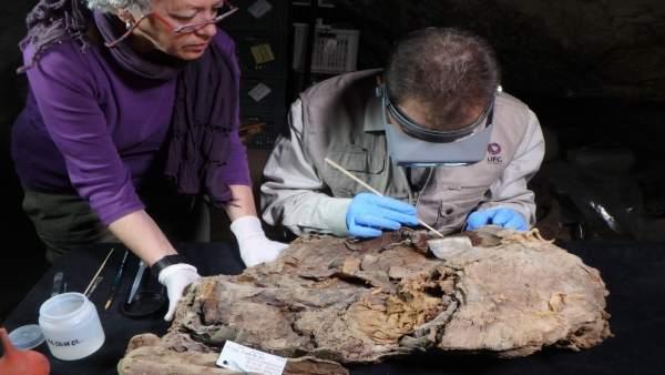 Unas jornadas dan a conocer estudios sobre momias egipcias