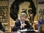 El ministro del Interior, Fernando Grande-Marlaska, comparece en el Senado
