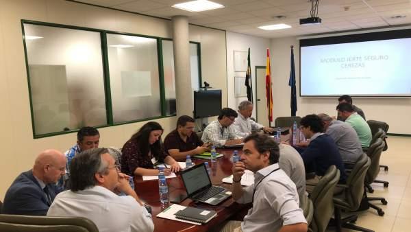 Reunión para propuesta de la Junta sobre el seguro en la cereza