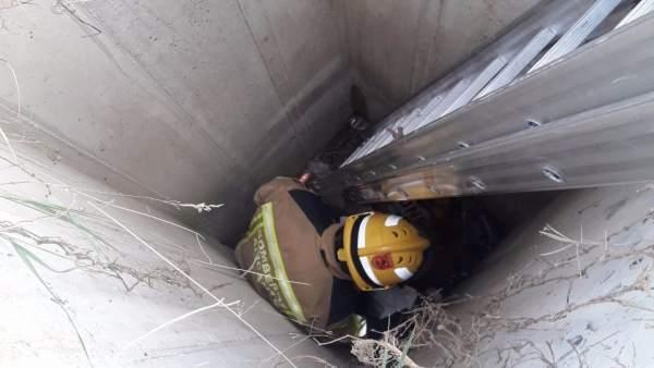 Un bombero accede a rescatar al perro en el pozo
