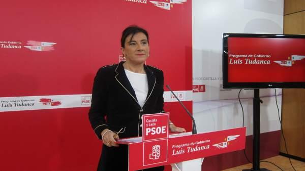 Sánchez presenta el comité electoral del PSOE para mayo/19
