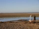 Pozo en Doñana