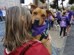 Más de 4.000 personas acuden a la carrera solidaria Perrotón para luchar contra el abandono de animales