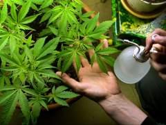 Unos jóvenes matan a una mujer con una horca tras ser descubiertos robándole la marihuana del huerto