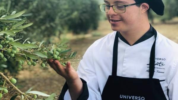 Un trabajador de Universo Santi en el olivar de Grupo Oleíca Jaén