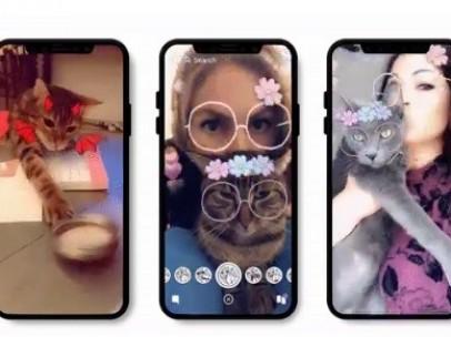 Filtros para gatos en Snapchat