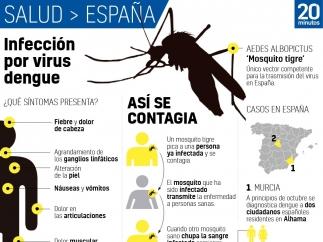 Infección por virus dengue