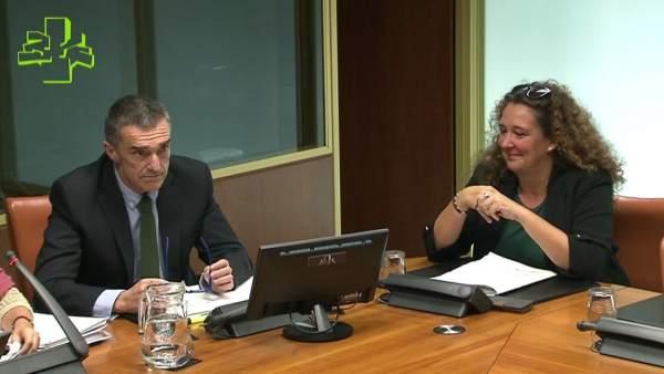 Jonan Fernández en comisión en el Parlamento Vasco