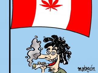 'Canadá legaliza la marihuana', viñeta de Malagón