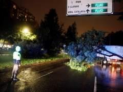 Gota fría en directo | Castellón, Teruel y Tarragona, en alerta roja por lluvias para este viernes
