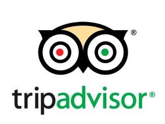 Logo oficial de TripAdvisor
