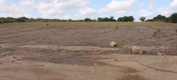 El Govern indemnizará las explotaciones agrarias que hayan sufrido daños a causa de las ...
