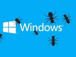 Bugs de Windows