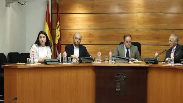 Comparecencia en Cortes Comisión Discapacidad FASPAS