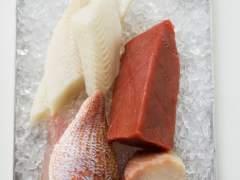 Atún y otros pescados.