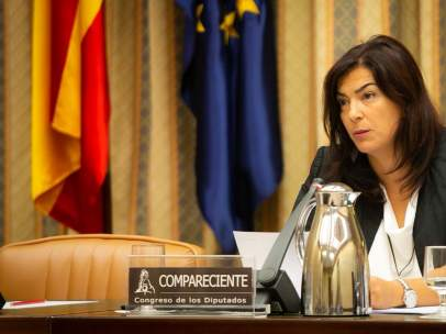 María José Rienda en el Congreso de los Diputados
