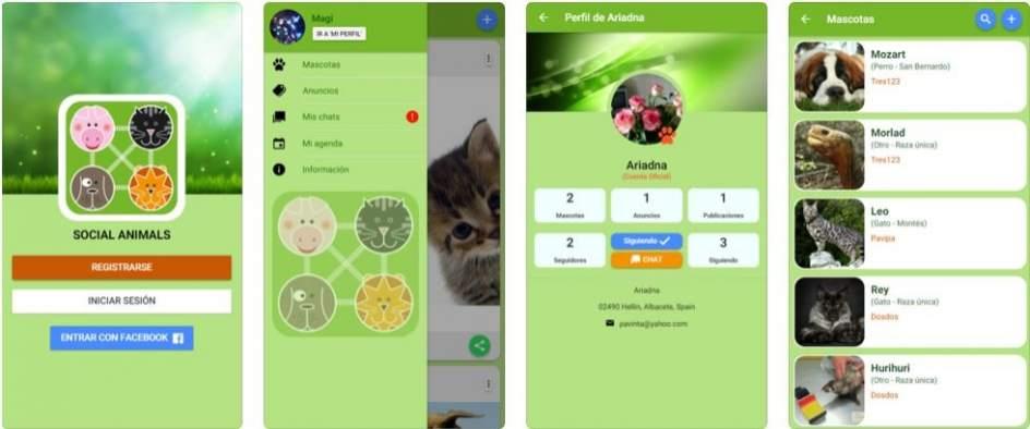 Una red social para mascotas, 'Social Animals'