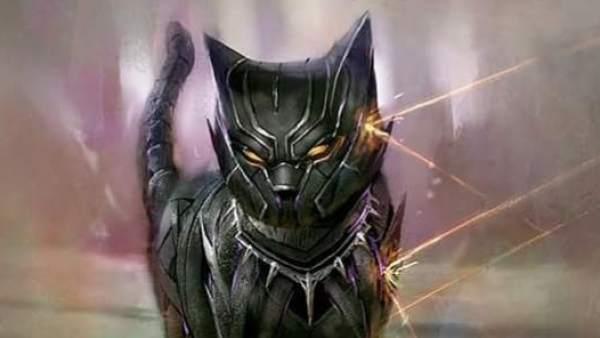 Black Panther convertido en gato