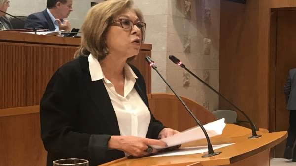 Pilar Ventura, consejera de Sanidad