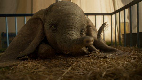 Primer tráiler de 'Dumbo', lo nuevo de Tim Burton