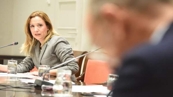 Rosa Dávila, en la comisión