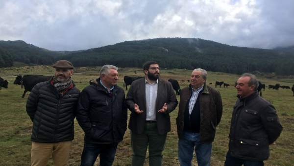 Visita a la ganadería El Colmenar.