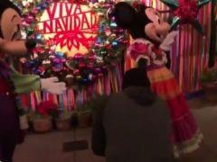 Propone matrimonio a Minnie Mouse