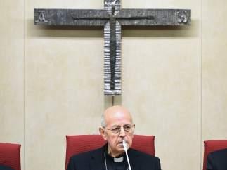 """La conferencia episcopal admite los abusos infantiles de la Iglesia y su """"penuria vocacional"""""""