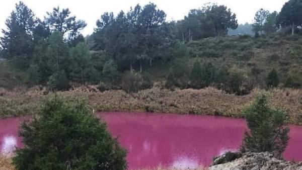 Una de las lagunas de Cañada del Hoyo