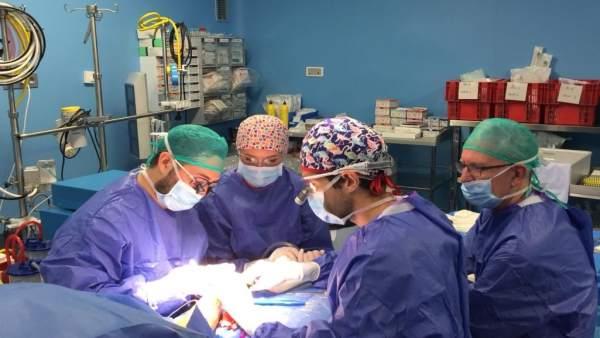 """Realitzen la transició de dona a home amb una única cirurgia """"pionera"""" i """"molt reeixida"""" a València"""